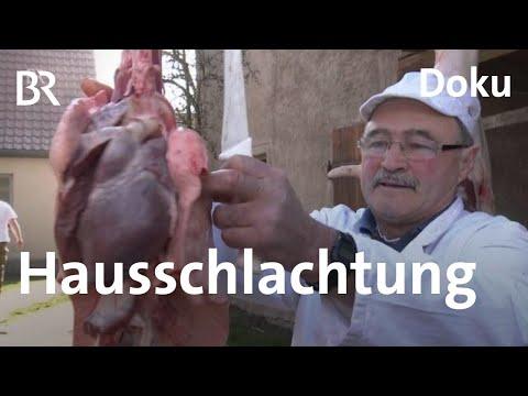 Hausschlachtung in Kirchlauter - Schwein gehabt | Zwi ...