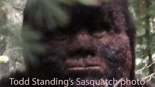 Bigfoot North Vlog: Discussing Various Sasquatch