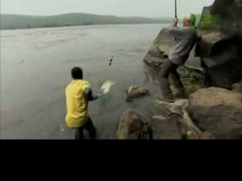 男子獨身釣到一尾超大级别的大魚