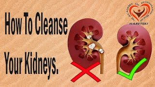 How To Cleanse Your Kidneys.