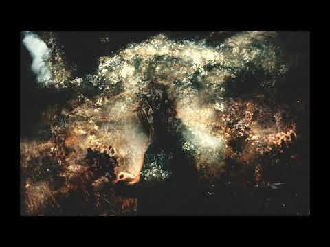 Piah Mater - Sprung From Weakness (Audio Visualizer) online metal music video by PIAH MATER