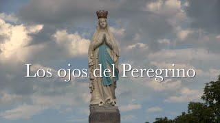 Peregrina con NSE al Santuario de Nuestra Señora de Lourdes