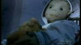 Video robert the doll MP3, 3GP, MP4, WEBM, AVI, FLV Juli 2018