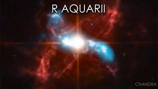 A Quick Look at R Aquarii by Chandra X-ray Observatory