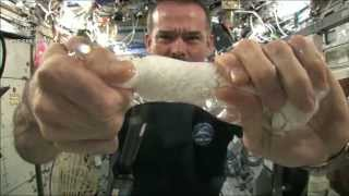 Wringing out a Water Soaked Washcloth in Space   CSA Science HD Video