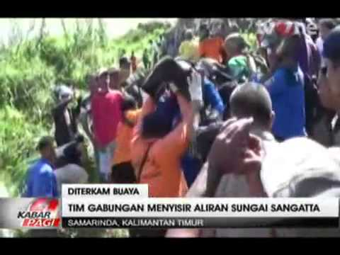 Video WOW Video Geger !!! Rekaman Seorang Remaja Di Terkam Buaya Akibat Mandi Di Sungai Sembarangan download in MP3, 3GP, MP4, WEBM, AVI, FLV January 2017