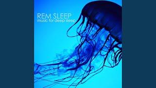Deep Sleep Cycle (Lucid Dream Music)