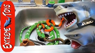 The Snakes Return! Toy Sharks Save Boys from the Toy Snake Invasion.