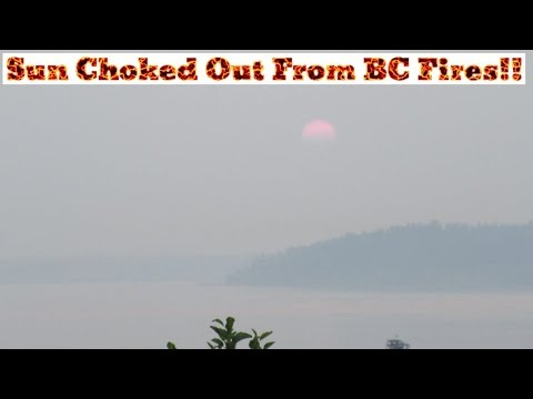 Sun Choked Out By BC Fires!! [Day 2845 - 08.15.18]