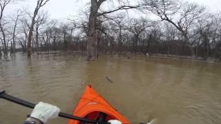 Un kayakiste sauve un écureuil de la noyade dans le Missouri.