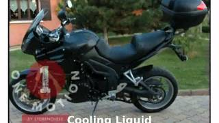 10. 2010 Triumph Tiger 1050 ABS Details and Specification