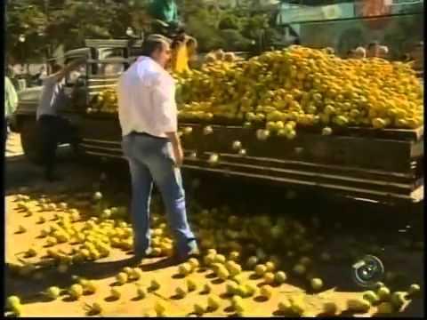 Protesto contra a crise da laranja em Taquaritinga-SP (TV TEM)