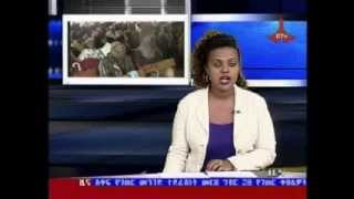 Amharic Day News August 7,2013