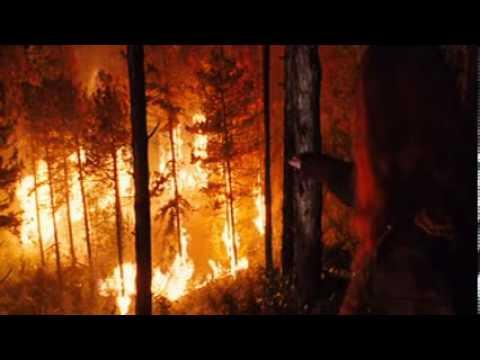Eragon Movie - Arya with Saphira's egg