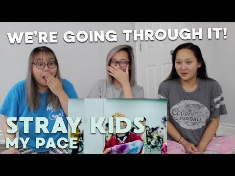 Video MV REACTION | Stray Kids (스트레이 키즈) 'My Pace' download in MP3, 3GP, MP4, WEBM, AVI, FLV January 2017