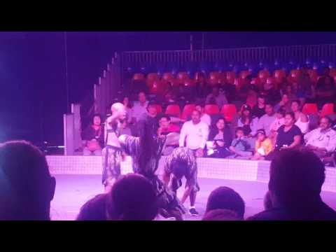 Performers of Zirka Circus at Royal Easter Show 2017, Auckland, NZ- Video2