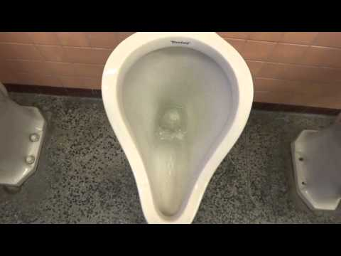 Bathroom Tour: Crystal Tower Building Standard Urinals and Kohler Penryn Commode for Toiletfan1