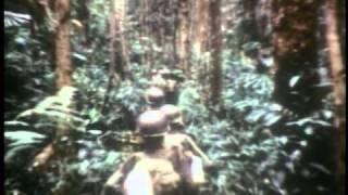 Video Vietnam War 1962 to 1975 - Part 1 of 3 MP3, 3GP, MP4, WEBM, AVI, FLV Desember 2018