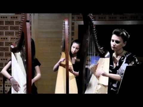 Girotondo d'Arpe - Morfa'r Frenhines (19.2.2012) (видео)