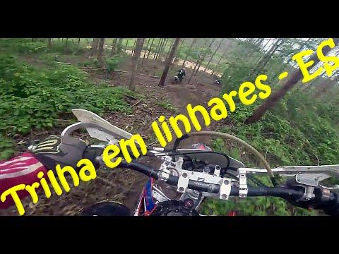 Trilha de moto CRF 250X - Sooretama Linhares (ES) - #parte 1 eucalipto