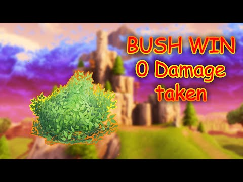 Bush Win FORTNITE