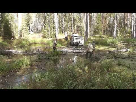 Путешествие в тайге, В поисках дикой природы Омская область 2015 год Сентябрь (видео)