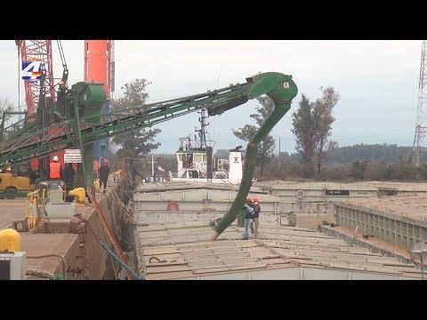 Importante actividad en el puerto sanducero con cargas a granel y en contenedores