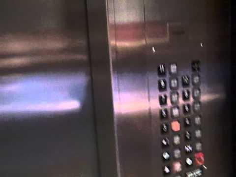 Video Montgomery Traction Elevators at the Hilton Concord in Concord, CA (Mom's POV) download in MP3, 3GP, MP4, WEBM, AVI, FLV January 2017