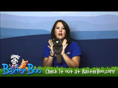 Pogo Plush Dog Toy - Beaver