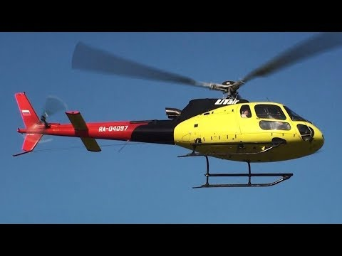 Еврокоптер AS350 Экюрой (с фр.—«белка»)...