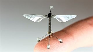 The mechanism was developed by researchers from Harvard for the RoboBee: a tiny flying robot first unveiled by a team from the university in 2013. But Now Tiny robot bees can land anywhere thanks to static electricity.Read More Here: http://wyss.harvard.edu/viewpage/457And Here: https://en.wikipedia.org/wiki/RoboBee