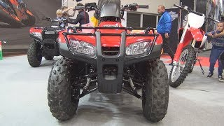 4. Honda TRX 250 FourTrax Recon 2WD/2WD ESP (2019) Exterior and Interior