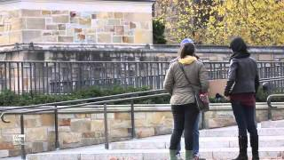 Ami on the Street: Satirist Ami Horowitz tests the waters at Yale University to see if today's Ivy League students would actually sign a petition to repeal t...