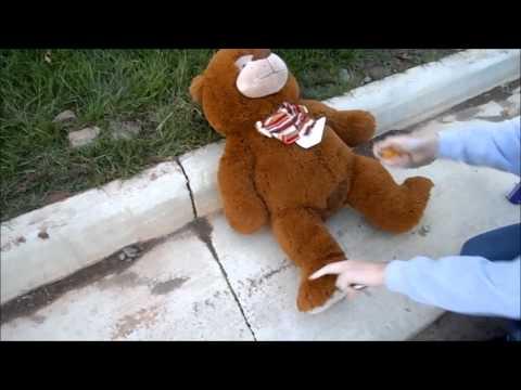 Lighting Stuffed Teddy Bear on Fire