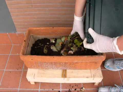 come fare il compost sul balcone senza compostiera