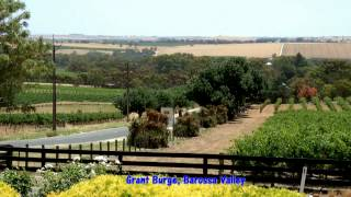 Barossa Valley Australia  city photos gallery : South Australia Wine Tours - McLaren Vale, Barossa Valley, Adelaide Hills