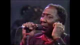 Video Muddy Waters / The Living Legends of Blues MP3, 3GP, MP4, WEBM, AVI, FLV Juli 2019