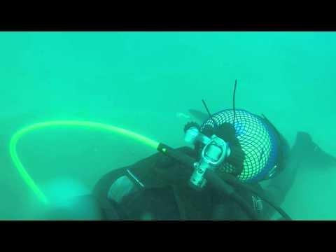 Sortida Secció de submarinisme Club Nàutic Garraf  27/11/2015