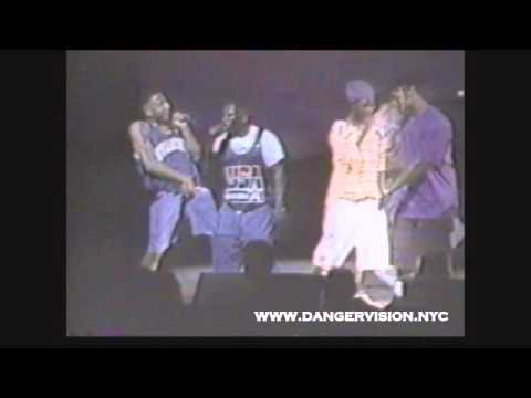 A Tribe Called Quest -  Check The Rhime  -  Live At The Apollo 1992