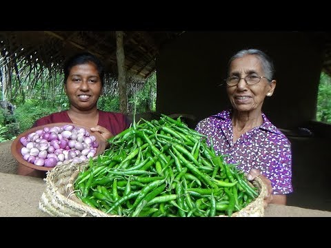 Green Chilli Recipe ❤ Spiciest curry by Grandma and daughter | Village Life