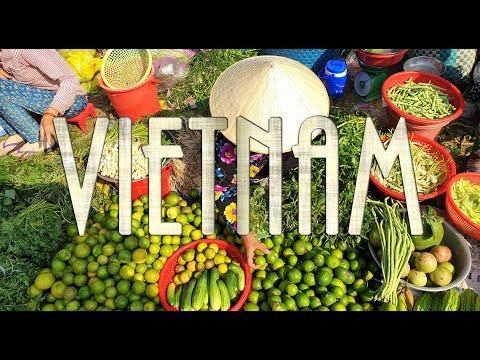 Von Saigon nach Hanoi: Vietnam-Rundreise 2019
