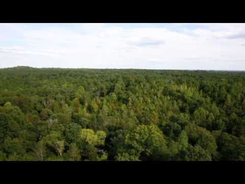 192 acres Sweet Water, AL