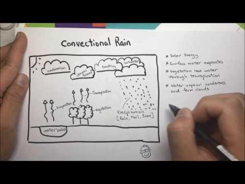 Convectional Rain complete