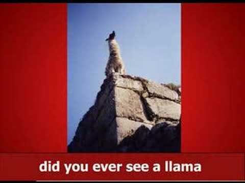 Burton Earny - The Llama Song