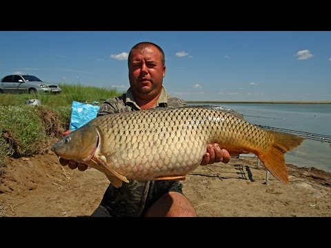 рыбалка в сентябре на украине
