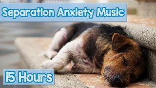 15 HOURS of Deep Separation Anxiety Music for Dog Relaxation! Helped 4 Million Dogs Worldwide! NEW!