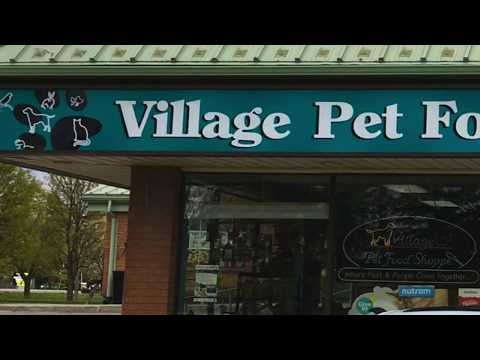 A Holistic Approach to Pet Care