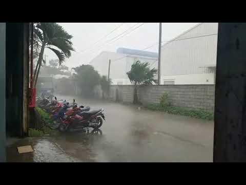 an ha -chiều mưa