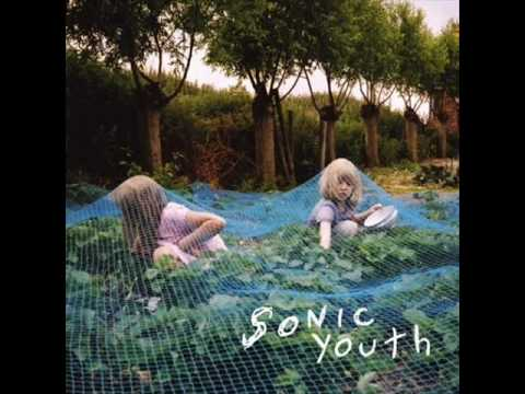 Video de Disconnection Notice de Sonic Youth