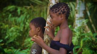 Malaria caused 438,000 deaths in one year. Most were children living in Africa, where a child dies every minute from malaria. In collaboration with the Equat...